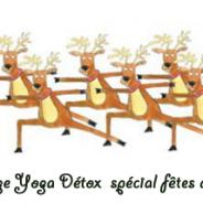 Atelier Yoga Detox dimanche 3 janvier