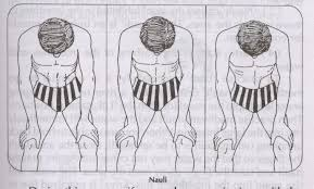 Nauli, une technique de Yoga Detox par Yoganandini